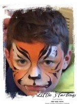 Face Painting Kid's Party Entertainment LIMERICK